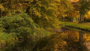 Обои Нидерланды Осень Реки Парки Утрехт Baarn Природа фото