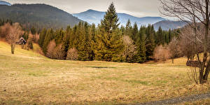 Обои Чехия Осень Горы Леса Луга Природа фото
