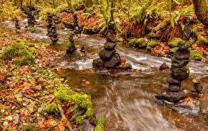 Обои Канада Водопады Камни Осень Листья Tod Creek Природа фото