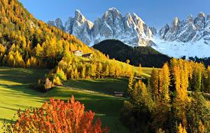 Фотографии Италия Осень Горы Леса Луга Пейзаж Dolomites Val Gardena Природа