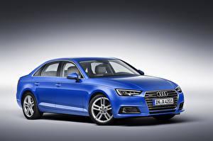 Картинки Audi Синий 2015 TFSI quattro S line Автомобили