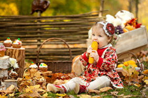 Обои Осень Кукуруза Девочки Листья Дети фото