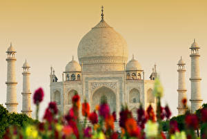Фотографии Тадж-Махал Индия Мечеть Agra India Uttar Pradesh