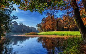 Обои Нидерланды Реки Осень Пейзаж Утрехт Деревья Darthuizen Природа фото