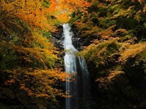 Обои Времена года Осень Водопады Природа фото