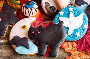 Фотография Хэллоуин Печенье Коты Продукты питания