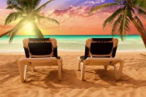 Фотография Море Тропики Рассветы и закаты Пальмы Шезлонг Природа
