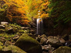 Обои Осень Водопады Камни Скала Природа фото