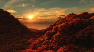 Картинка Времена года Осень Леса Рассветы и закаты Пейзаж Природа