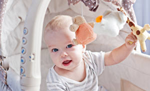 Обои Игрушки Младенцы Взгляд Дети фото