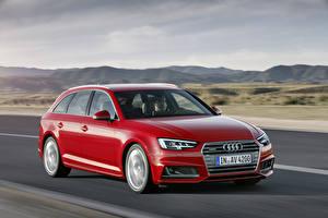 Фото Audi Красная Скорость Универсал 2015 TDI quattro Avant S line