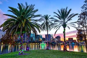 Обои США Озеро Парки Дома Флорида Пальмы Orlando, Lake Eola Park, Lake Eola Города фото