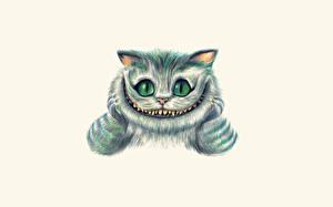 Фото Алиса в стране чудес Белый фон Cheshire Cat Фэнтези