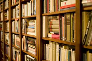 Фото Книга Библиотека