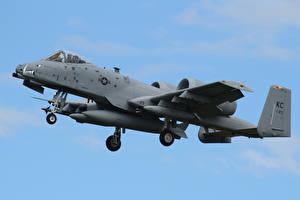 Фотография A-10 Thunderbolt II