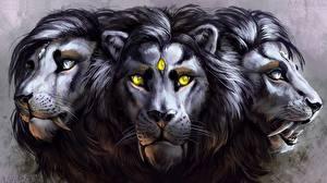 Обои Волшебные животные Львы Голова Трое 3 Фэнтези фото