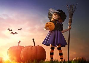 Картинки Тыква Праздники Хэллоуин Ведьма Девочка Шляпа ребёнок