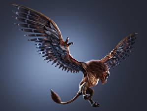 Обои The Witcher 3: Wild Hunt Волшебные животные Крылья Griffin Игры 3D_Графика Фэнтези фото