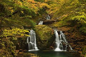 Обои Водопады Осень Ветки Мох Природа фото