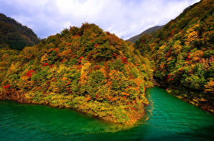 Фото Япония Гора Озеро Осень Лес Природа