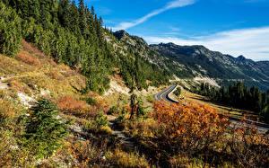 Картинки Штаты Горы Дороги Пейзаж Ель Sheep Lake Rocky Mountain Природа