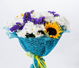 Обои Букеты Подсолнухи Хризантемы Дельфиниум Белый фон Цветы фото