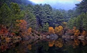 Обои Времена года Осень Леса Озеро HDR Природа