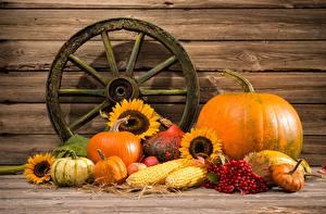 Фото Тыква Овощи Осень Натюрморт Еда