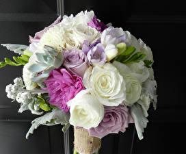 Фото Букеты Розы Фрезия Пионы Цветы