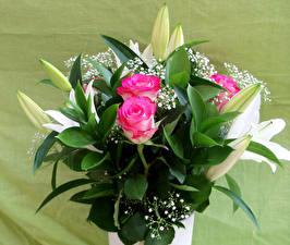 Картинки Букеты Розы Лилии Бутон цветок