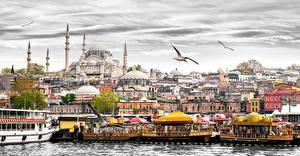 Обои Стамбул Турция Дома Причалы Чайка Города фото