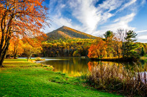 Обои Времена года Осень Реки Пейзаж Деревья Трава Природа фото