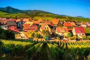 Фото Франция Здания Поля Виноградник Кусты Hunawihr Города