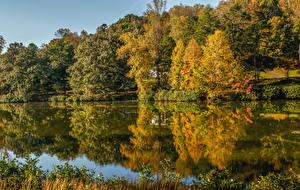 Обои США Озеро Осень Деревья Lake Lanier Martinsville Virginia Природа фото