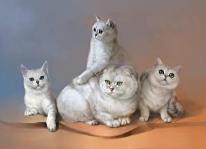 Обои Кошки Рисованные Белые Четыре 4 Животные