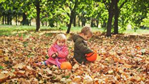 Обои Осень Тыква Двое Мальчики Девочки Листья Дети фото