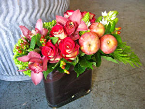 Обои Розы Орхидеи Яблоки Цветы фото