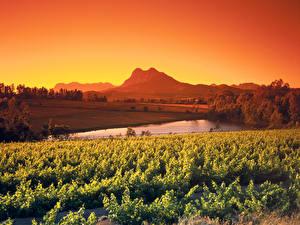 Картинка Африка Пейзаж Поля Вечер Пруд ЮАР Кусты Simonsberg Природа