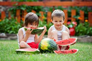 Обои Арбузы Мальчики Двое Кусок Трава Дети фото