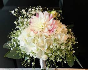 Картинка Букеты Гортензия Пионы Цветы