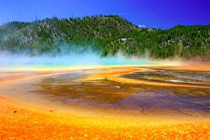Картинки США Парки Горы Озеро Лес Йеллоустон