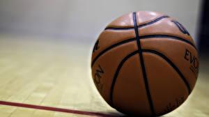 Фотографии Баскетбол Крупным планом Мяч Спорт