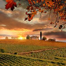 Обои Италия Осень Поля Рассветы и закаты Тоскана Облака Природа