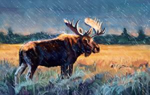 Обои Лоси Рисованные Дождь Трава Рога