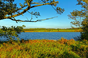 Обои Германия Реки Осень Трава Ulmen Природа фото