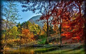 Обои Италия Озеро Осень Пейзаж Деревья Spinone al Lago Lombardy Природа