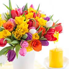 Обои Букет Нарциссы Тюльпан Роза Свечи Белый фон цветок