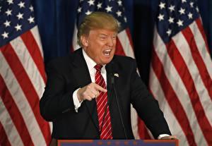 Фотографии Дональд Трамп Мужчины Костюм Президент Галстуке Знаменитости