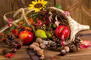 Фотографии Осенние Яблоки Орехи Груши Ягоды Листья Шишки Колос