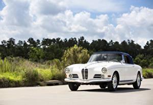 Фотографии БМВ Ретро Белые Металлик 1956-58 503 Cabriolet (Series I) авто